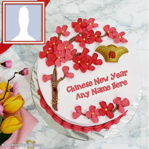 Chinese Cake For Lunar New Year 2017 With Name & Photo