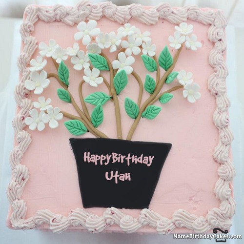 Sensational Happy Birthday Utah Cakes Cards Wishes Funny Birthday Cards Online Overcheapnameinfo